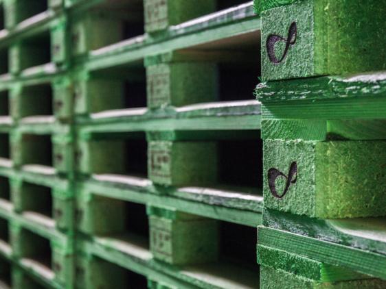 vihreitä kuormalavoja